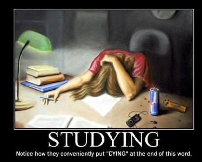 studying-meme